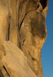 joshua_tree__rock_face