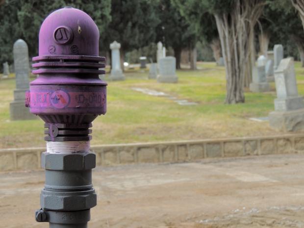 Jeff_Mays-Hillside_Memorial_Park