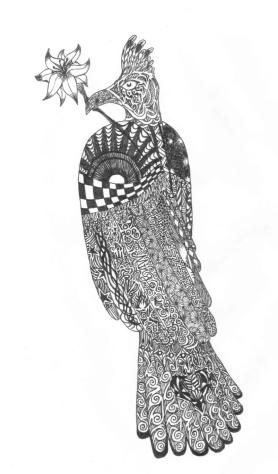 bird-xie.jpg